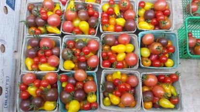 almonte-farmers-market_20170830_113902 - Copy
